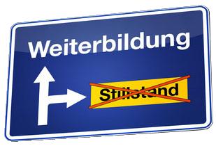 Weiterbildung - English translation - German-English dictionary